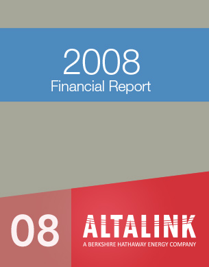 2008 Financial report
