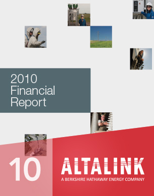 2010 Financial report